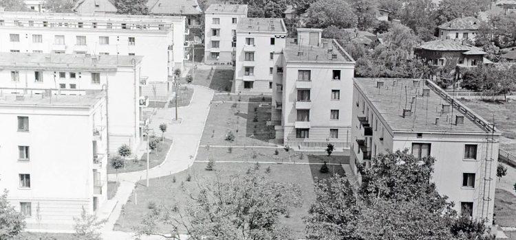 Zona strazii Hasdeu – 1964