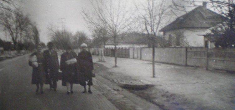 Undeva in Bărcănești – foto 1943