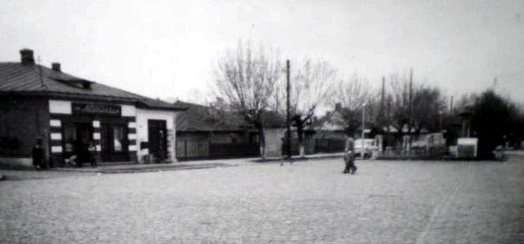 Zona Pisica Albă – foto 1971