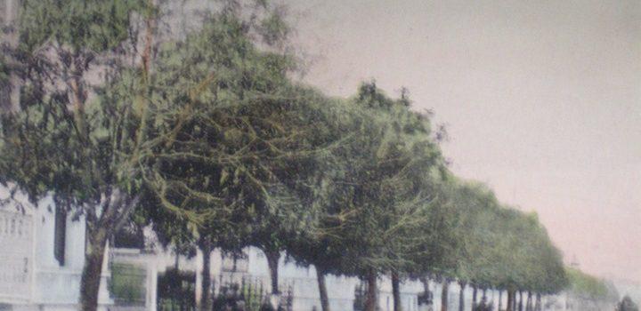 """""""Ploesti, Bulevardu Independența"""" – vedere de pe la 1900"""