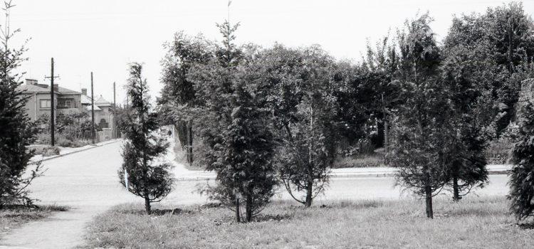 La intersecția străzilor Veronica Micle și Mihai Eminescu – foto 1969