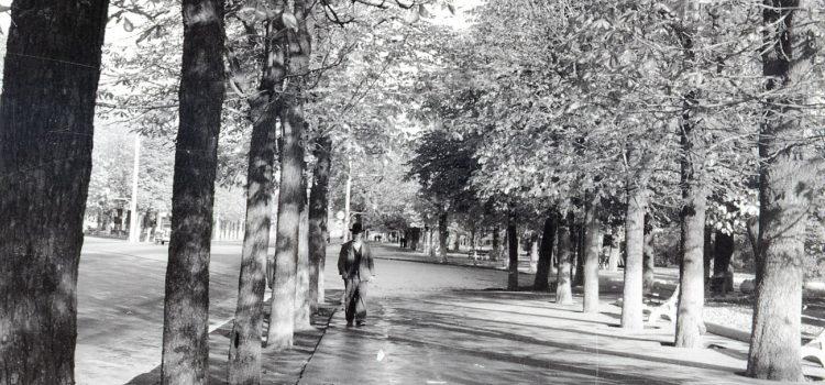 """La pas prin rondul """"La Eliseu"""" – foto 1954"""