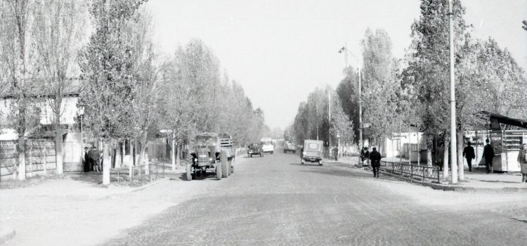 Spre Bariera Bucov in anul 1966