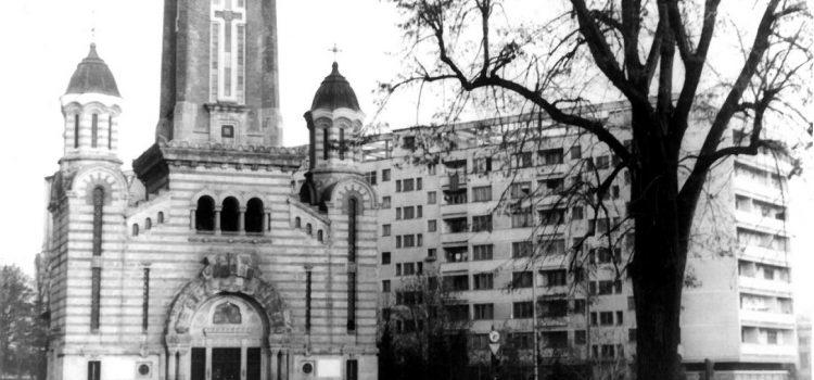 Stejarul din fata Catedralei Sf. Ioan Botezatorul.