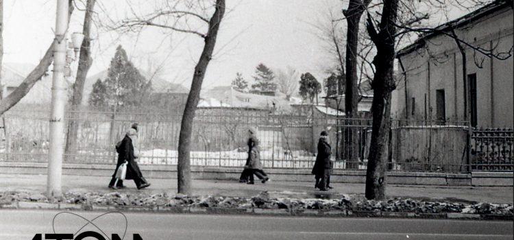 """Grădina fostei case """"Gheorghe Dobrescu"""" – foto 1979"""