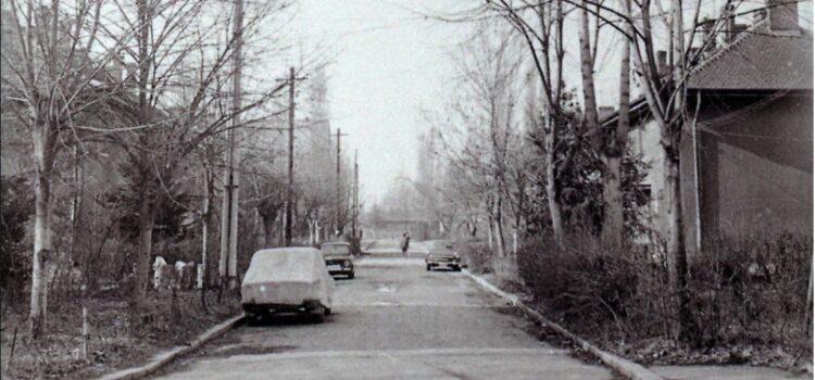 Pe strada Bobâlna – foto 1979