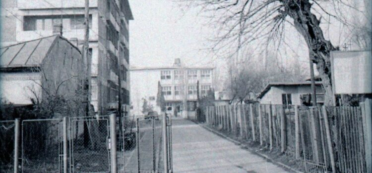"""Liceul de Artă """"Carmen Sylva"""" – foto 1979"""